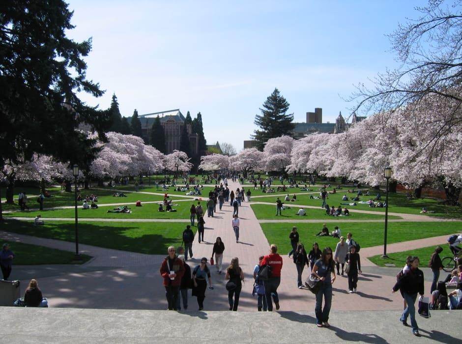 Turismo em Seattle na primavera