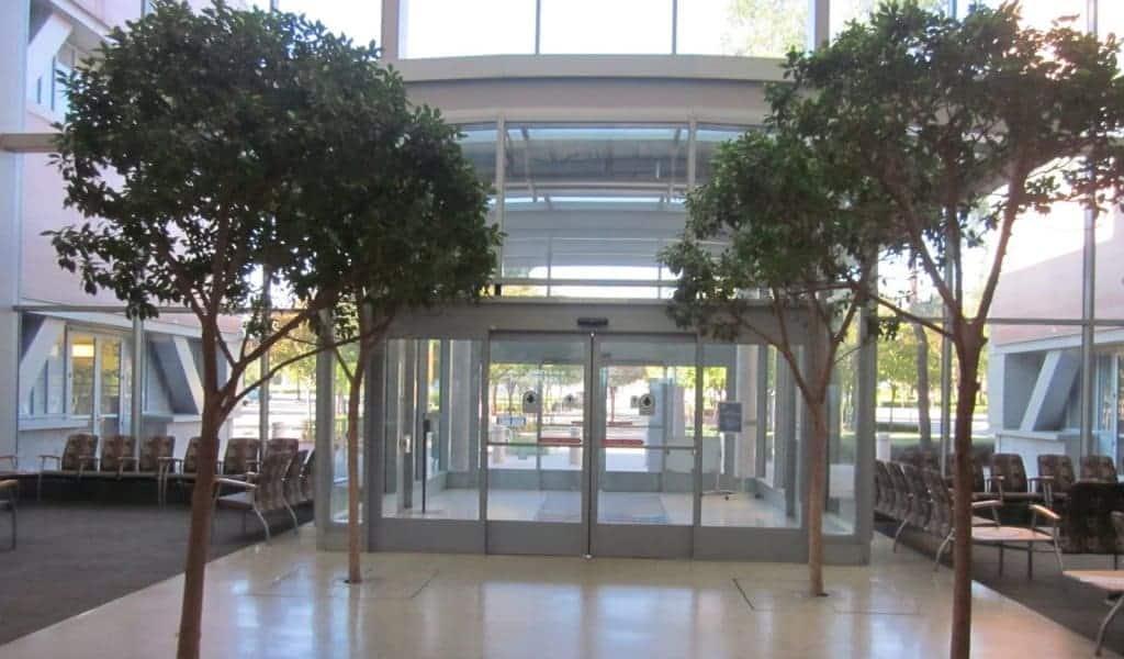 Recepção do Seattle Grace Hospital: Veterans Administration Sepulveda Ambulatory Care Center