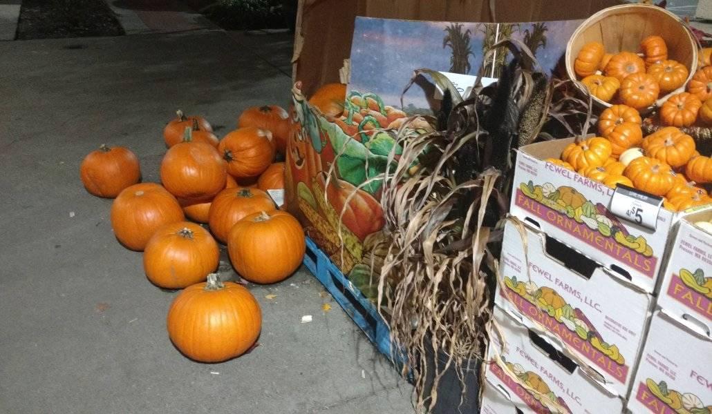 Abóboras no mercado para a festa de Halloween em Seattle