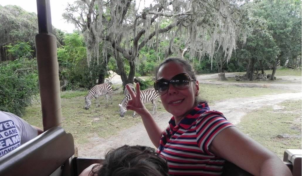 Kilimanjaro Safaris no Animal Kingdom